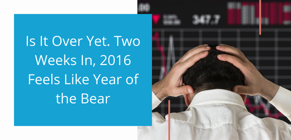 Is It Over Yet. Two Weeks In, 2016 Feels Like Year of the Bear